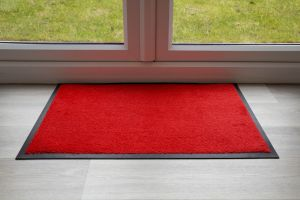 Indoor Red Luxury Red Entrance Throw Down Matting